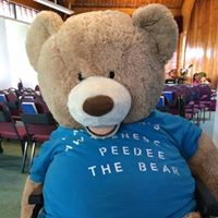 Pedee the Bear